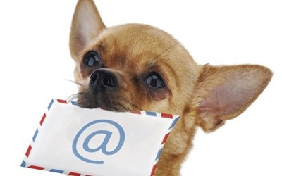 dog-with-mail