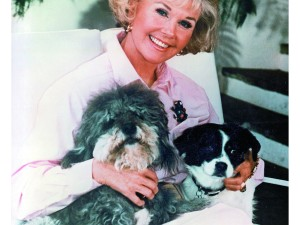 Doris and dogs Biggest and Lovey