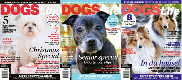 Dogs-life-subscription-give